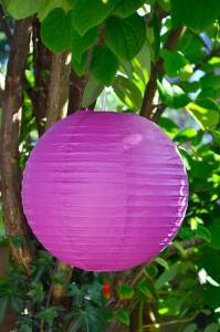 Fuchsia Lampion